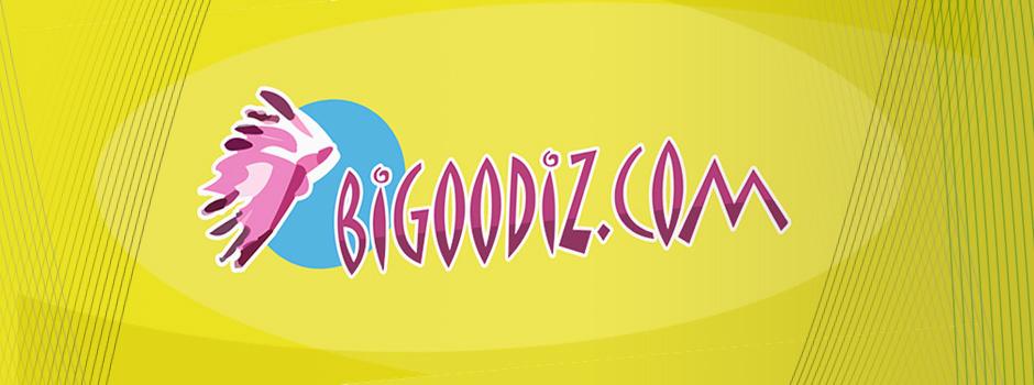 logo-bigoodiz_2